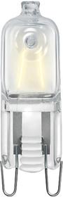 CLICKLINE ECO T13 42W G9 230V Żarówka halogenowa kapsułka 2000h przezr (D)