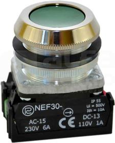 NEF30-Kz 2X zielony Przycisk sterowniczy kryty